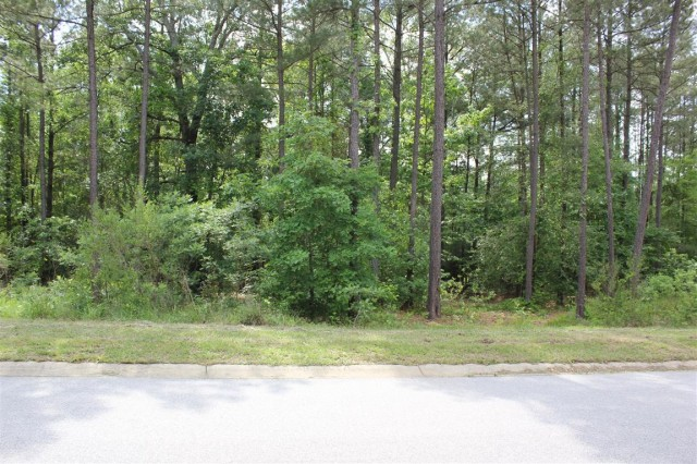 117 Stargazer Court, Leesville SC 29070 | Lot 167 | Lot Frontage
