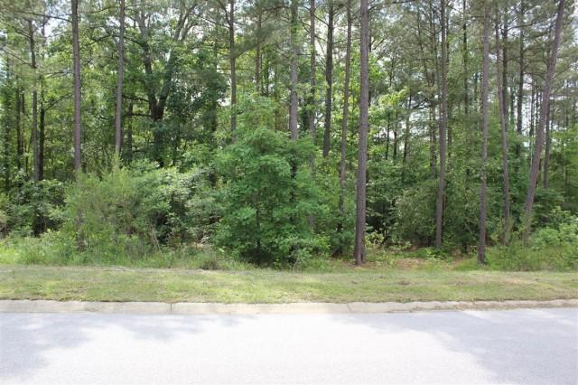 117 Stargazer Court, Leesville SC 29070 | Lot 167 | Lot Frontage