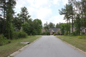 117 Stargazer Court, Leesville SC 29070 | Lot 167 | Looking North to Cul-de-sac