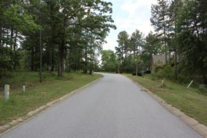 117 Stargazer Court, Leesville SC 29070 | Lot 167 | Looking South
